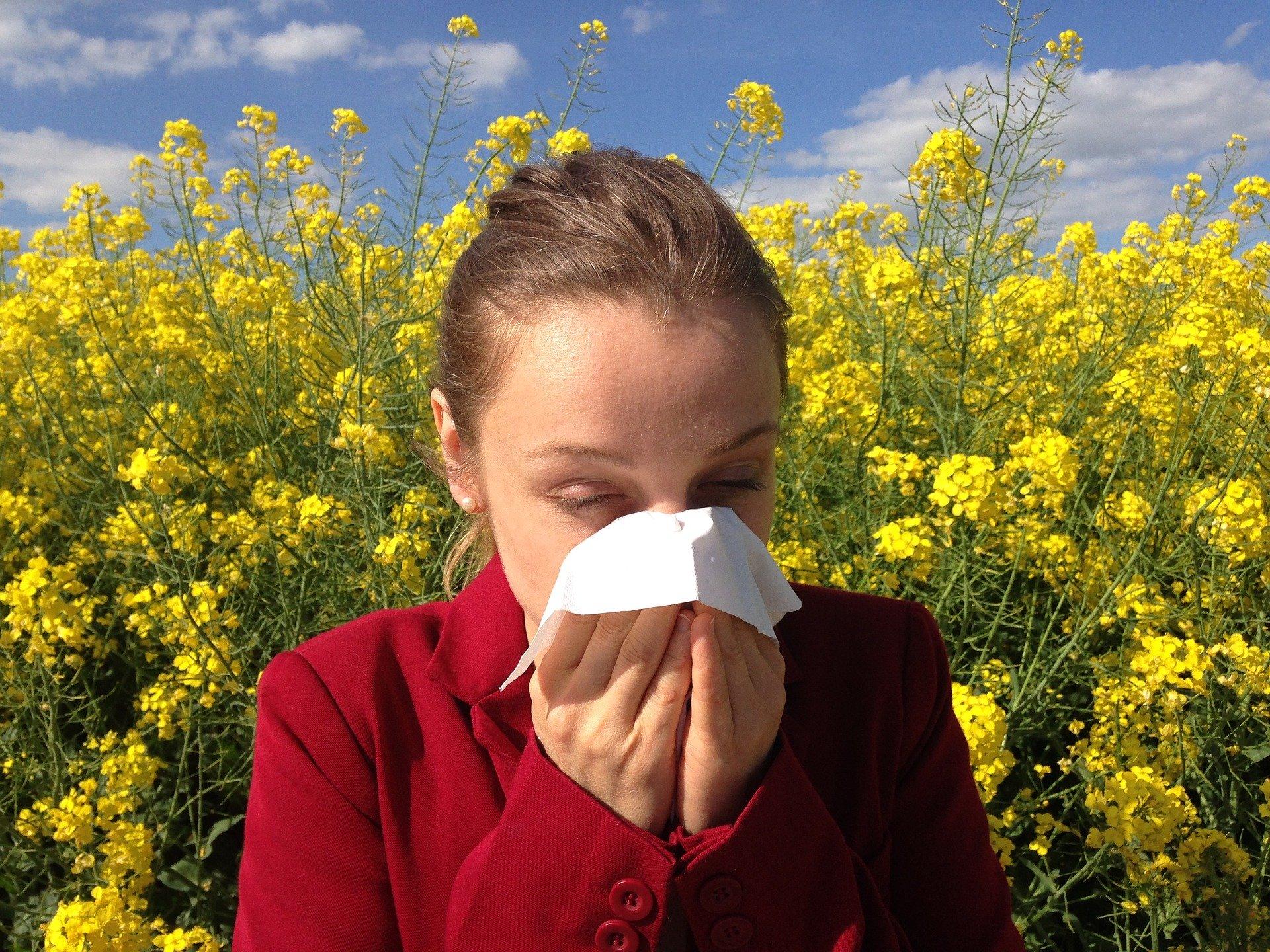 raffreddore o allergia